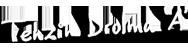 Tenzin Drolma 'A'